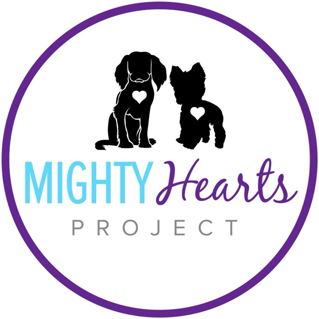 Project Mighty Hearts